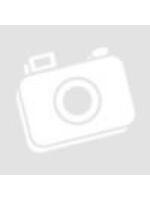 2013 márciusi szám - V évfolyam 3. szám