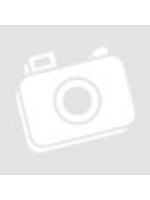 Egy szó mint száz - Magyar-angol tematikus szókincstár