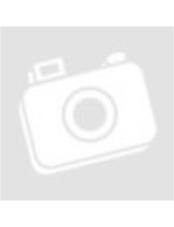 Dinosaurs matricavilág - angol nyelvű matricás foglalkoztató